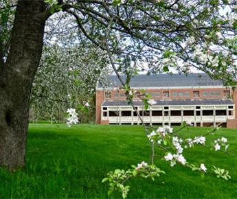 Ozawa Hall in the Spring